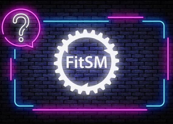 FitSM Quiz